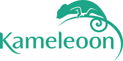 Kameleoon-Logo